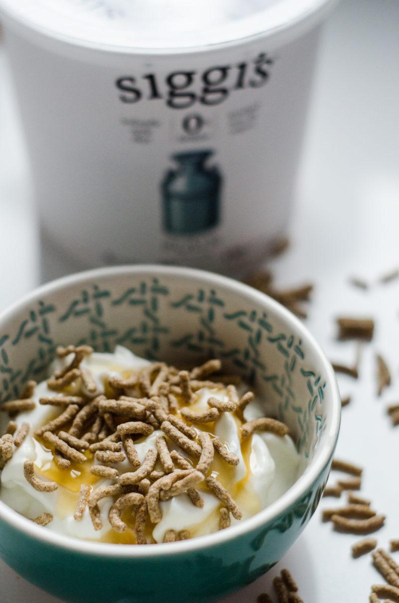 Siggis Yogurt Snack